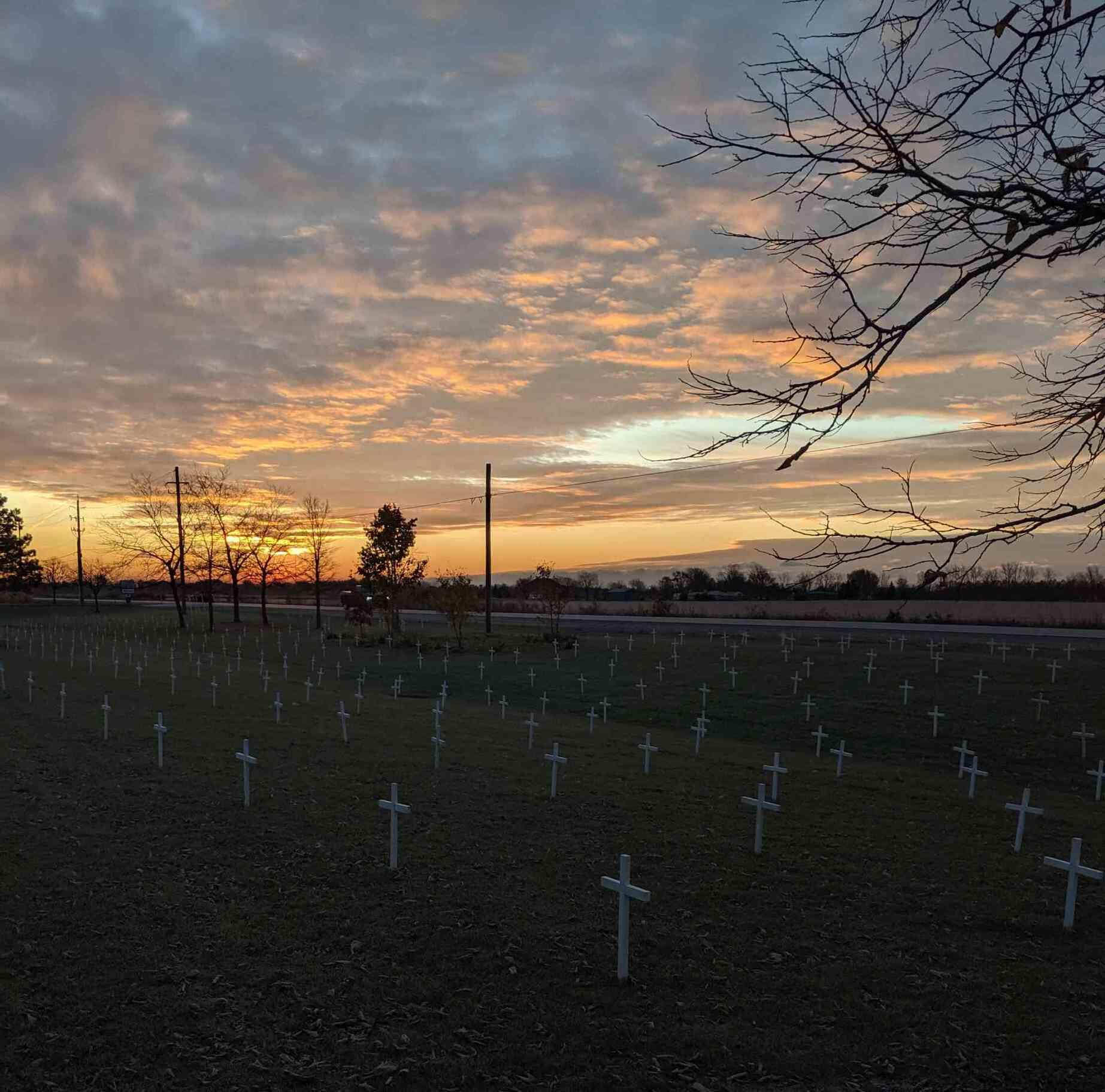 AM800-News-Villanova-Remembrance-Day-Crosses-Twitter.jpg