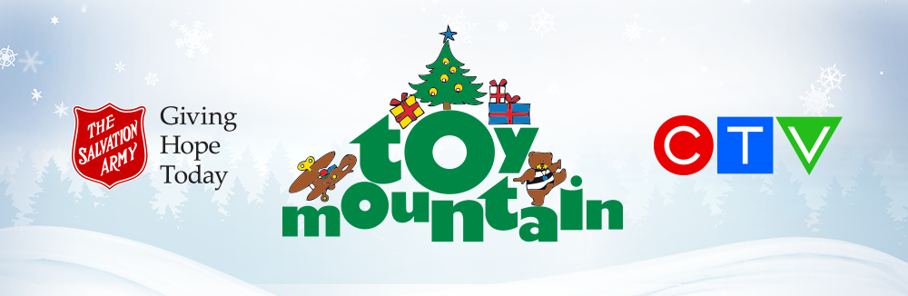 Toy Mountain banner 2019