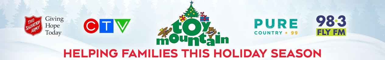 Toy Mountain 2019 Kingston banner