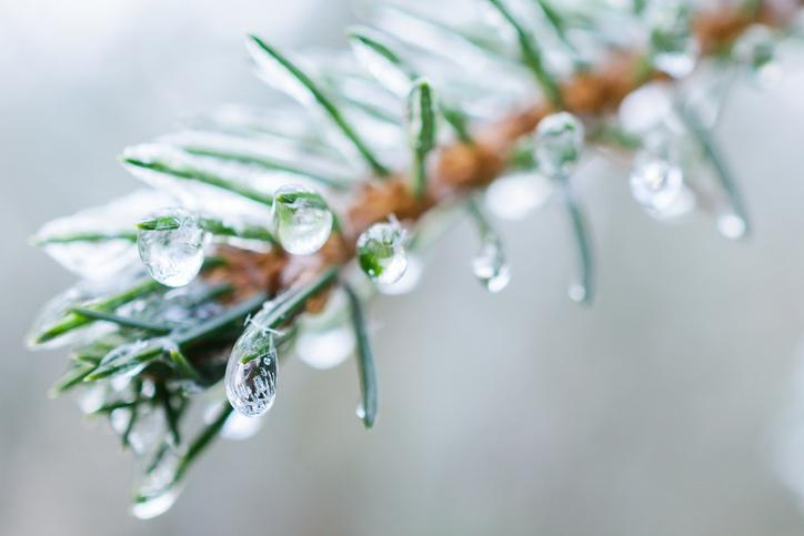 CKTB - NEWS - Freezing rain branch