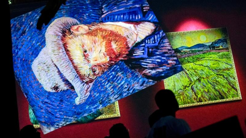 "People watch a virtual projection during the ""Van Gogh The Immersive Experience"" exhibition in Brussels, Friday, Oct. 12, 2018. (AP Photo/Francisco Seco)"