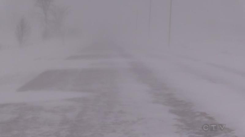 File Photo of a snow squall in Bruce County. (Scott Miller / CTV London)