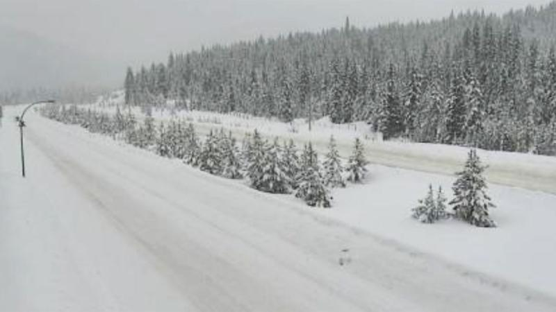 A DriveBC traffic cam shows Highway 5 shortly before 9 a.m. on Monday, Feb. 24, 2020.