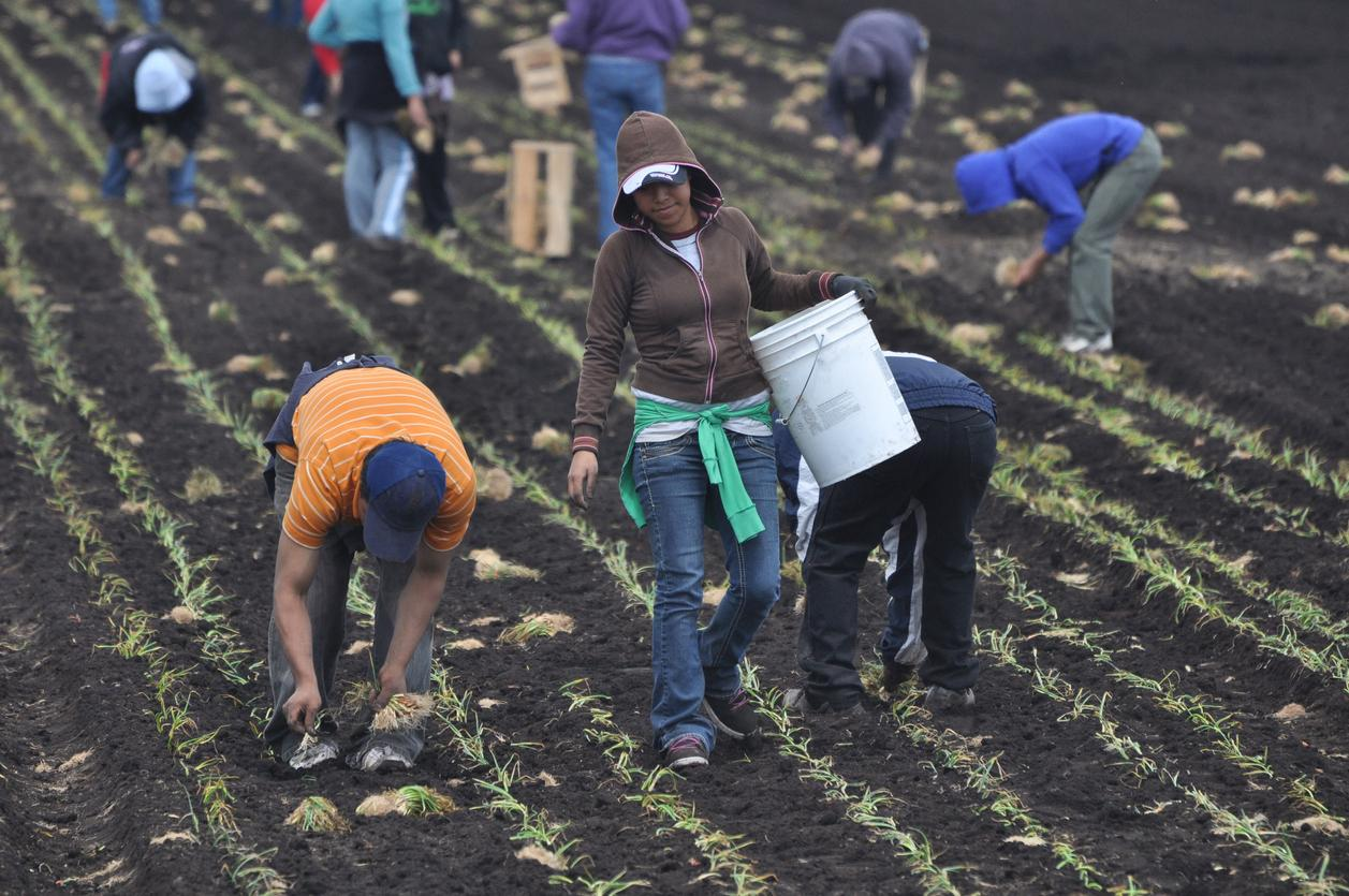 am800-news-migrant-workers