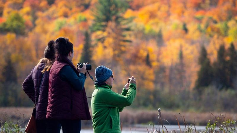 David Gillies, Teresa Finik and Christina Torsein, left, take in the fall colours in Gatineau Park in Chelsea, Que., on Sunday, Oct. 14, 2018. (Justin Tang/THE CANADIAN PRESS)