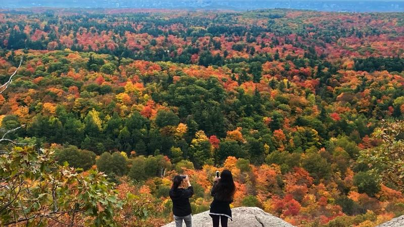 Visitors pause to take photos of the changing colours as they hike in the Gatineau park near Chelsea, Que. Sunday, October 4, 2020. (Adrian Wyld/THE CANADIAN PRESS)