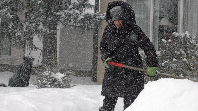A woman shovels her sidewalk on Saskatoon's Saskatchewan Crescent East as her dog looks on in this Feb. 14, 2015 file photo.