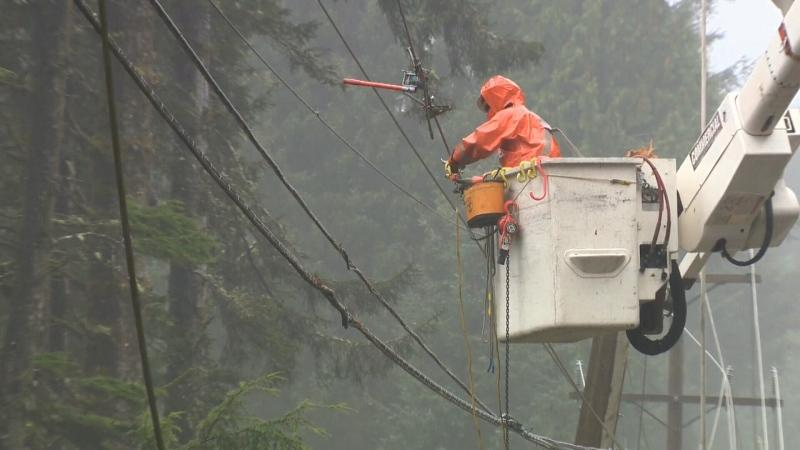 As of Saturday afternoon, more than 5,000 BC Hydro customers were without power on Vancouver Island.