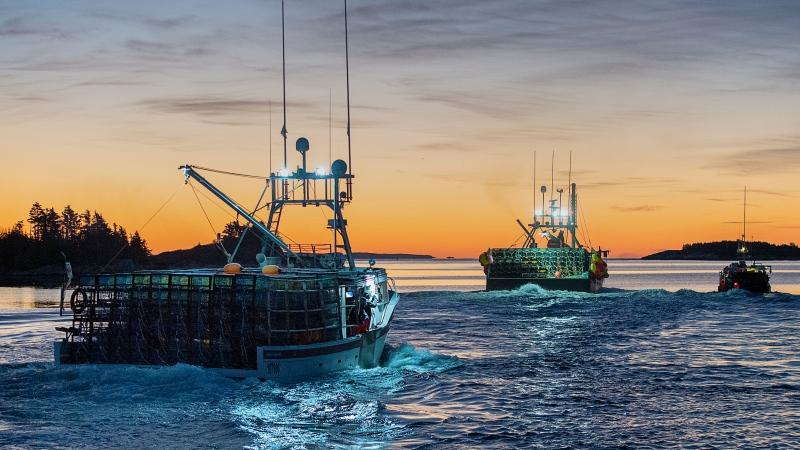 Boats loaded with traps head from the harbour in West Dover, N.S. on Monday, Nov. 30, 2020 as the lucrative lobster fishing season on Nova Scotia's South Shore opens. (THE CANADIAN PRESS/Andrew Vaughan)