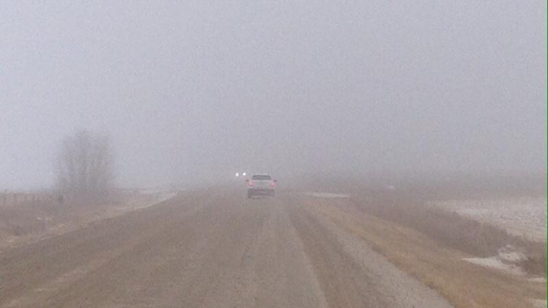 Dense fog is accompanying a slow-moving weather front that has developed in regions along the Yellowhead Highway, parts of Highway 11 and areas east and north of Regina. (Jeff Rogstad/CTV Saskatoon)