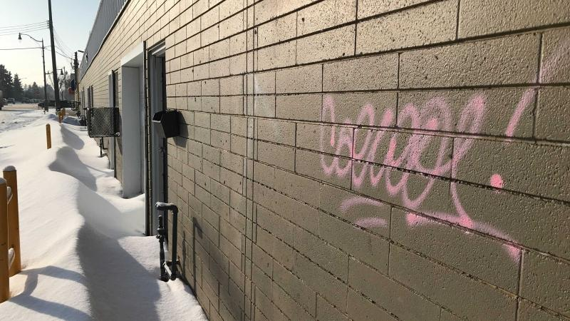 Graffiti vandalism spotted in Edmonton on Friday, Jan. 29, 2021. (CTV News Edmonton/Evan Klippenstein)