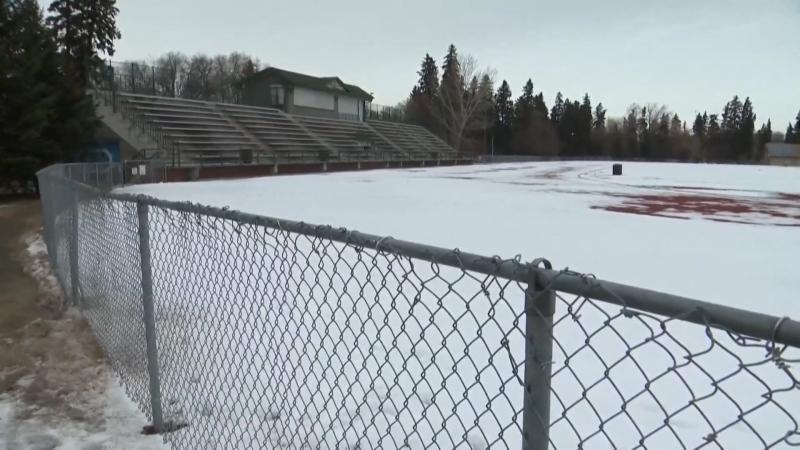 Community groups are hoping to build a $76-million rec centre at Rollie Miles Athletic Park.