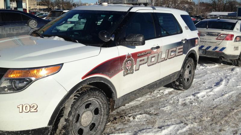Guelph Police Service vehicles are seen on Friday, Jan. 30, 2015. (David Imrie / CTV Kitchener)