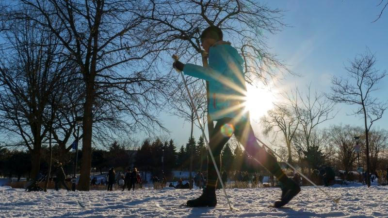 A crosse country skier is seen in a park on a sunny winter afternoon in Montreal. THE CANADIAN PRESS/Paul Chiasson