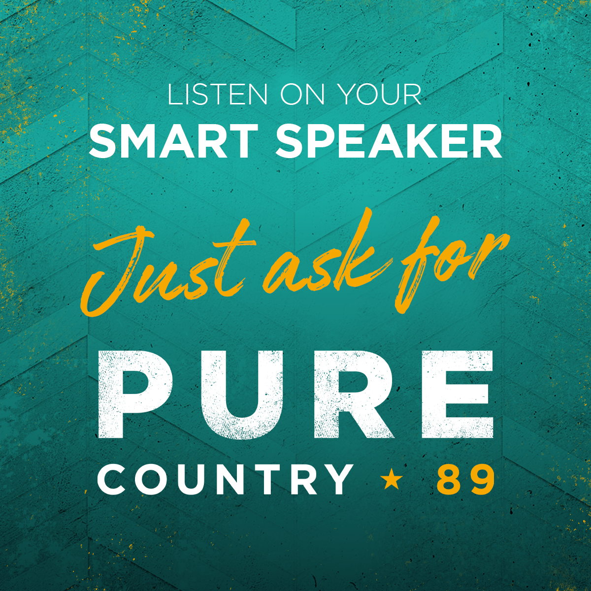Pure_Country_89_Smart_Speaker_1200x1200