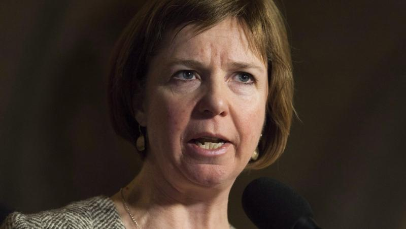 NDP MP Sheila Malcolmson speaks with the media in Ottawa on Thursday, November 30, 2017. The New Democrats say that if the Liberals were serious about ensuring men and women get equal pay for work of equal value, they would be moving faster on introducing legislation - and attaching a dollar amount.THE CANADIAN PRESS/Adrian Wyld