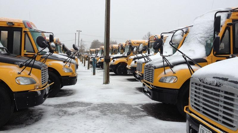 school buses parked in snowly lot