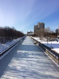 The Rideau Canal Skateway in Ottawa.