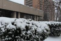 AM800-News-Snow-Winter-Windsor-Stock-Photo-15