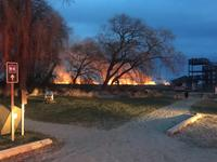 AM800-News-Point-Pelee-National-Park-Marsh-Fire2-March2017