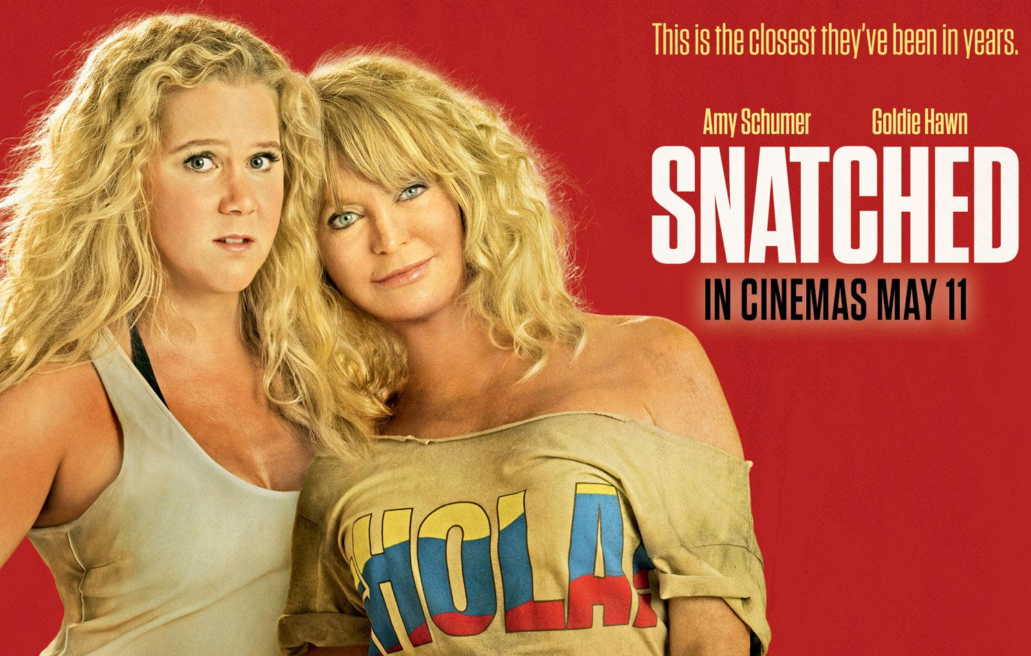 Snatched (film)