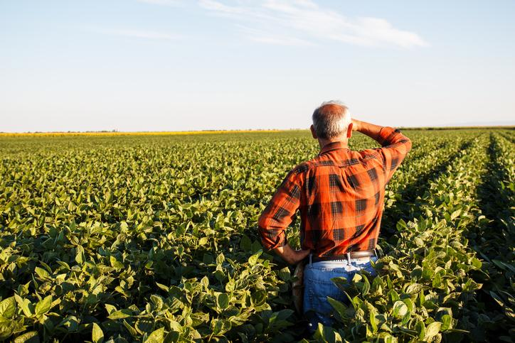 Istock : agriculture