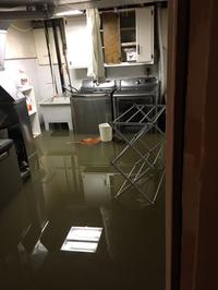 AM800-News-Windsor-Essex-Flooding-Basement-Photo.jpg
