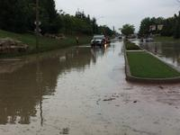 AM800-News-Windsor-Essex-Flooding-Dougall-South-Cameron-1-Aug2017.jpg