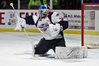 AM800-NEWS-spitfires-michael-dipietro-greyhounds-october-5-2017