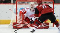AM800-sports-hockey-nhl-red wings-coyotes-