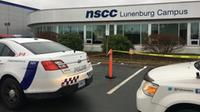 Police and the Department of Natural Resources responded to the NSCC campus in Bridgewater after a deer crashed through a window. (CTV Atlantic)