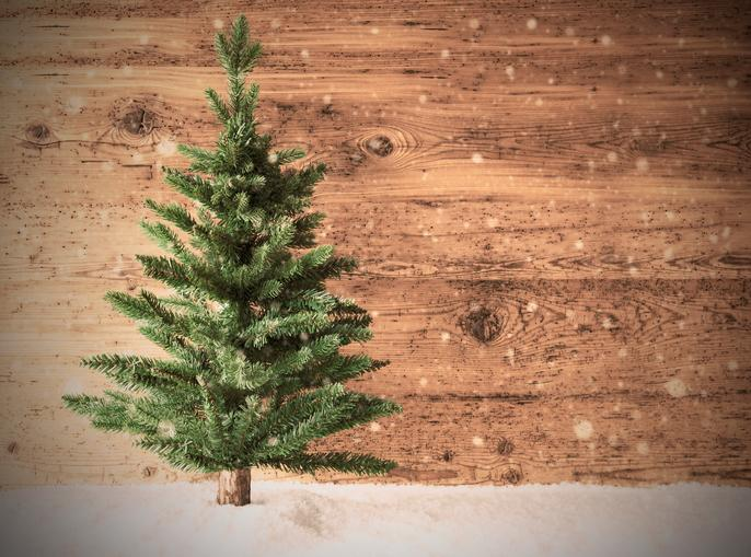 How Much Do Real Christmas Trees Cost.Christmas Trees Cost More This Year