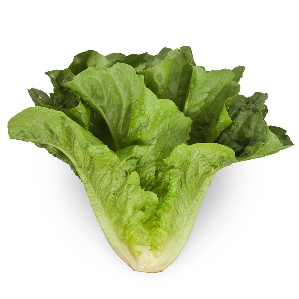 e coli romaine lettuce canada