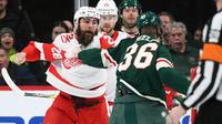 am800-sports-hockey-NHL-detroit-red wings-wild