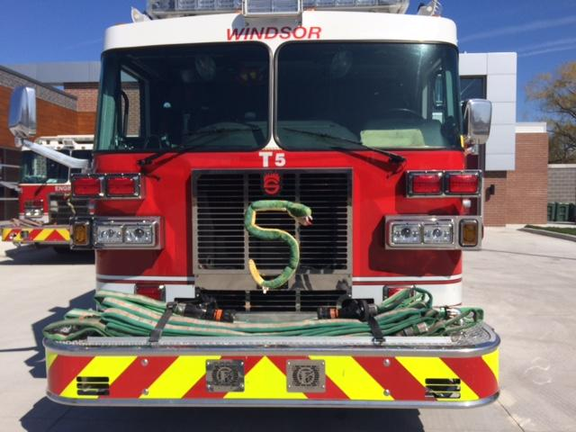 am800-news-fire-truck-station-5-snake-may-2018