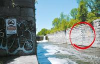 The steps (circled) that swimmers use to get out of the water