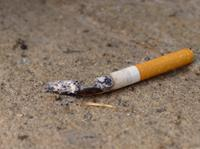 AM800-News-Discarded-Cigarette