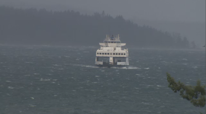 Wild windstorm leaves many in the dark and BC Ferries at the
