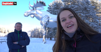Norwegian politician may travel to Canada for possible moose statue summit