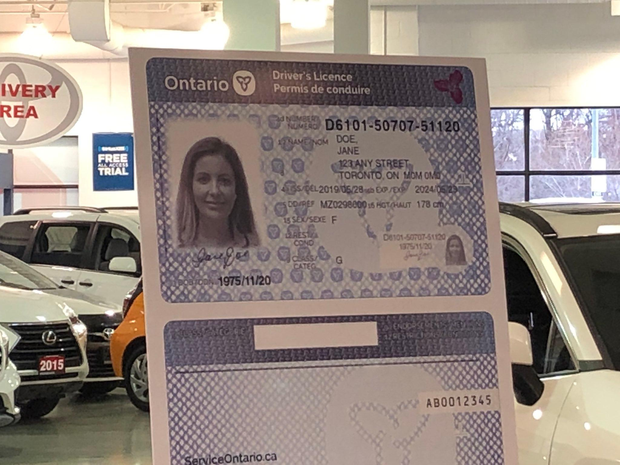 Ontario plans to eliminate enhanced driver's licences used