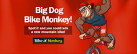 big-dog-monkey