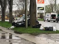 A car is wrapped around a tree on Clarke Road in London, Ont. on Tuesday, May 7, 2019. (Sean Irvine / CTV London)