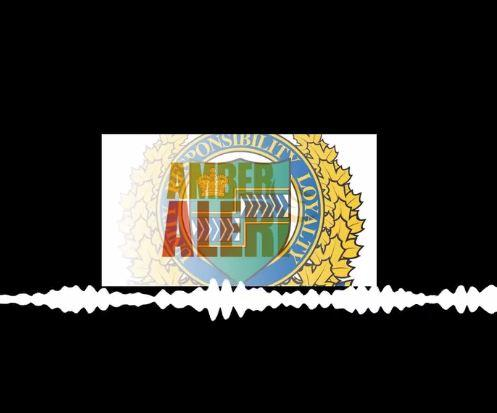 LISTEN | NRP receive angry 911 complaint after Amber Alert