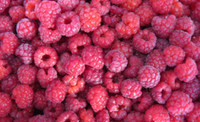 raspberries ctv montreal luke jones flickr