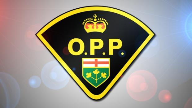 Police Foot Chase In East End Pembroke