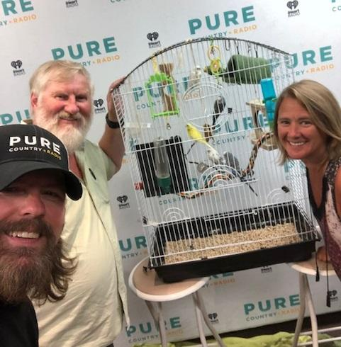 Budgies - adopt by the pair, or make a deal for the whole cage