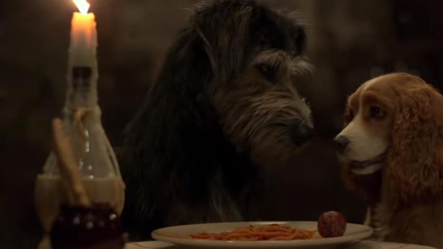 Can T Wait For This Live Action Lady And The Tramp