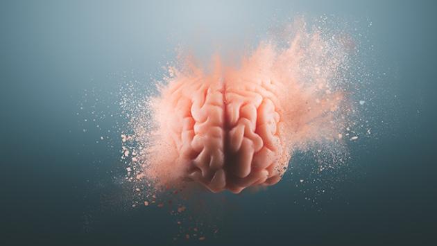 Cerveau soufflé par l'esprit