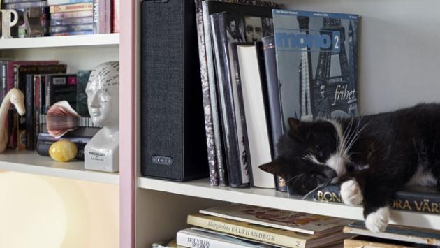Une bibliothèque garnie de livres, d'un haut-parleur et d'un chat